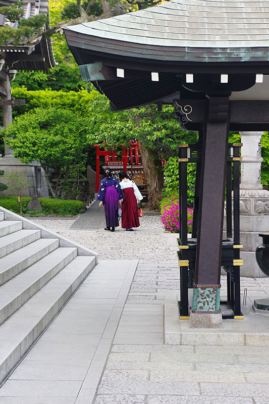 kamakura hakama